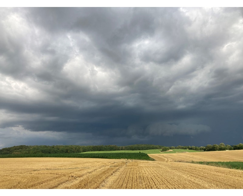 """Marktkommentar: """"Ertragsunsicherheit durch Wetterextreme"""" (Dr. Reimer Mohr)"""