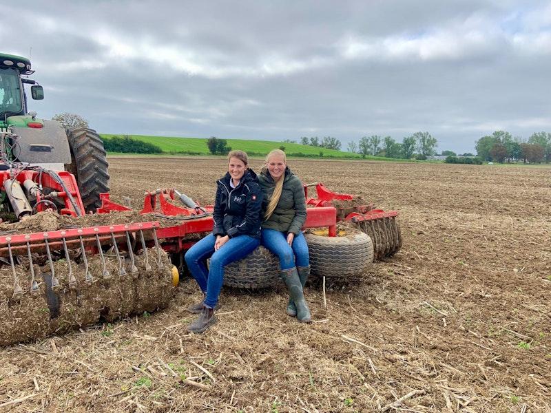 Bodenbearbeitung zu Getreide 2021
